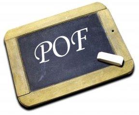 """Tentativi di definizioni del P.O.F """"Essenziale"""""""