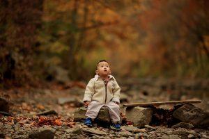 Piantare  alberi per ogni bambino che nasce.